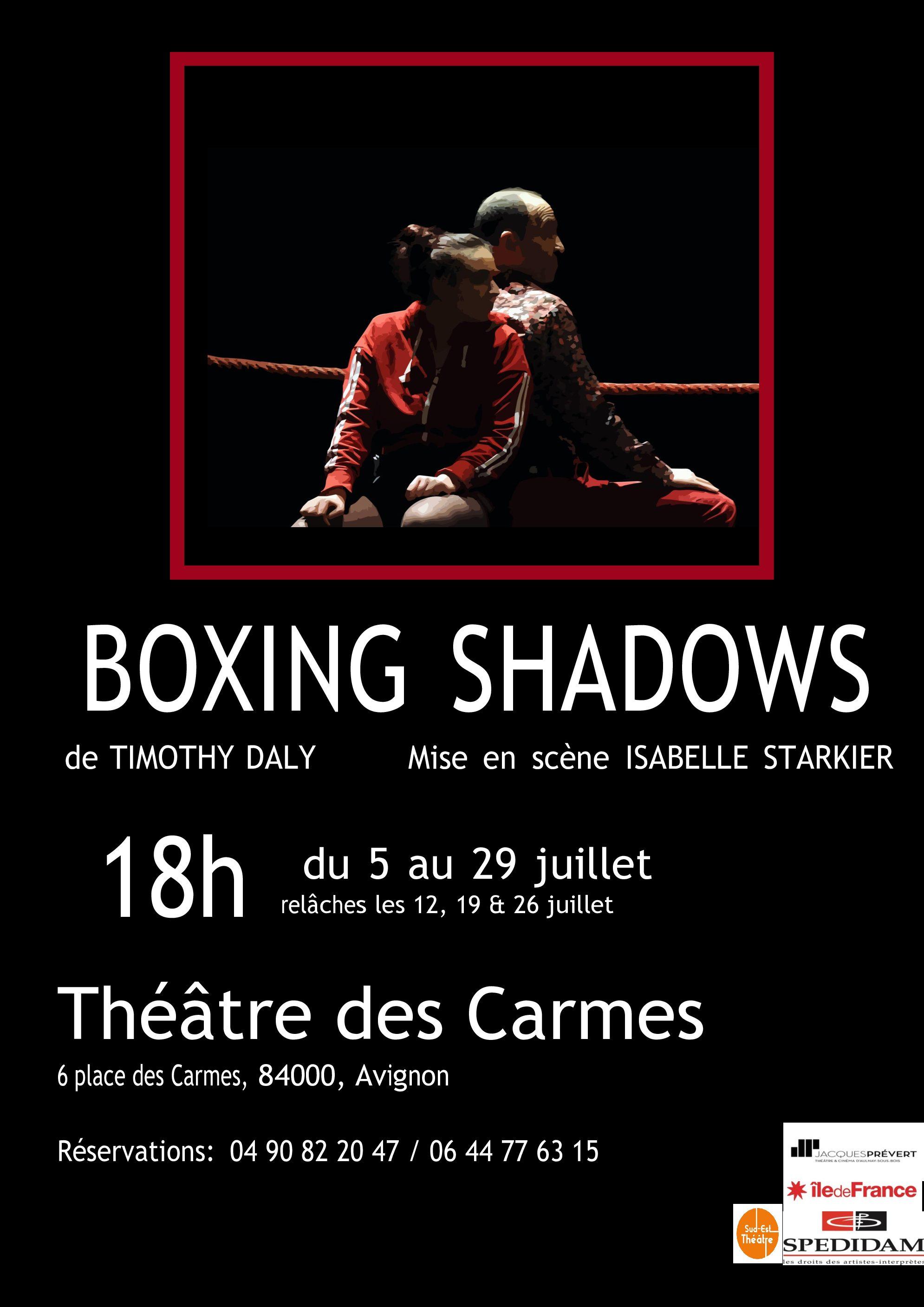 BOXING SHADOWS Avignon 21 // Diffusion